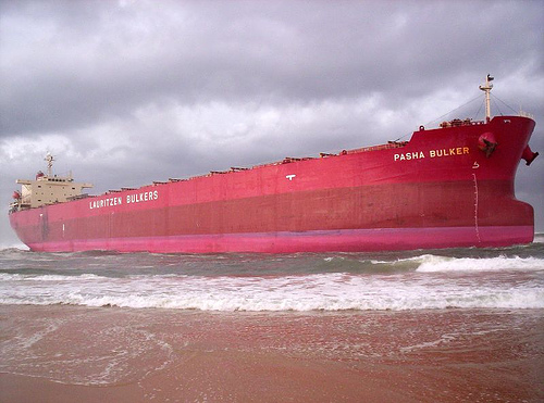 PAsha Bulker - Beached