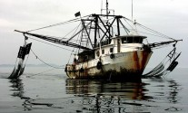 US Congress Cracks Down on Pirate Fishing