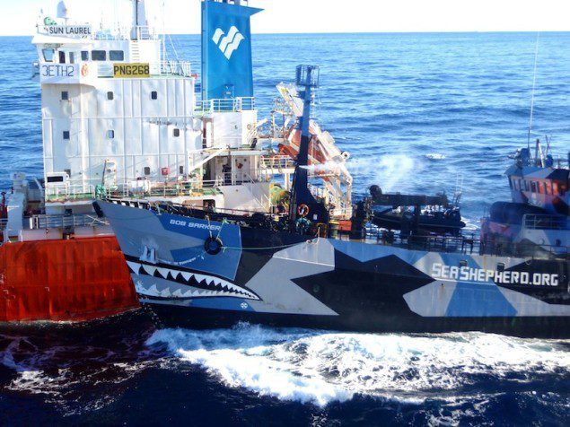 Sea Shepherd Ship Bob Barker collides with the refueling tanker Sun Laurel February 25, 2013 in the Southern Ocean REUTERS/The Institute of Cetacean Research/Handout