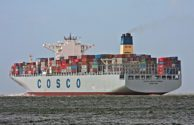 cosco developement